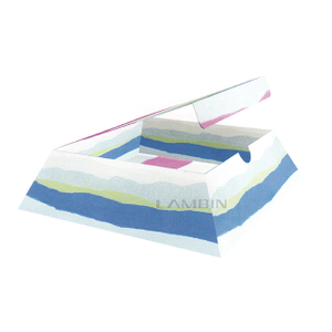 The Tray-like Moveable Lid Packing for Fashionable Accessories